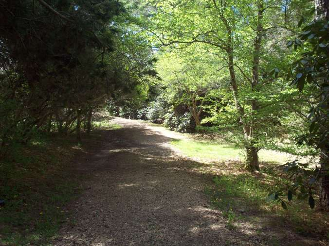 One of the many nature trails at Heritage Museum & Gardens