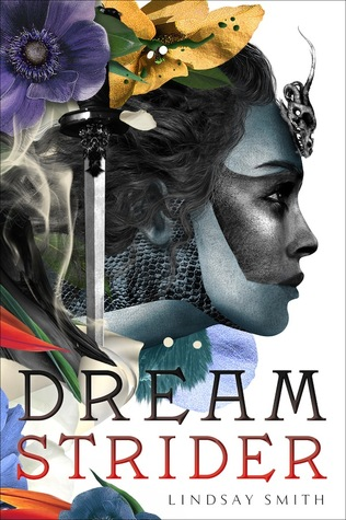 Dreamstrider cover