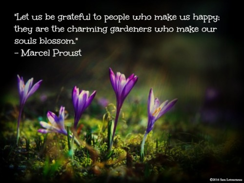 Marcel Proust quote