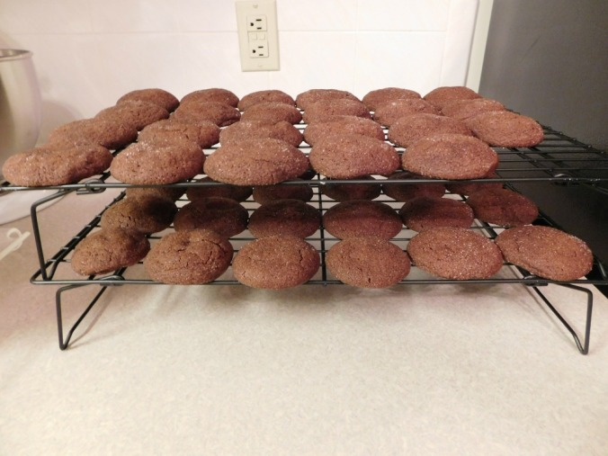 Choc Cookies on Rack_1