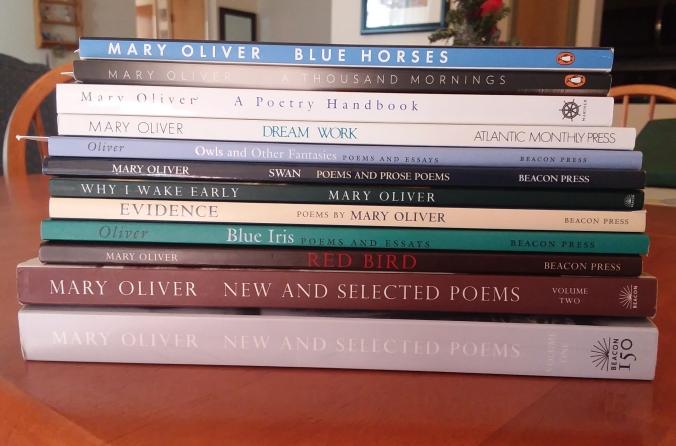 Thank You, Mary Oliver (1935 – 2019) | Sara Letourneau