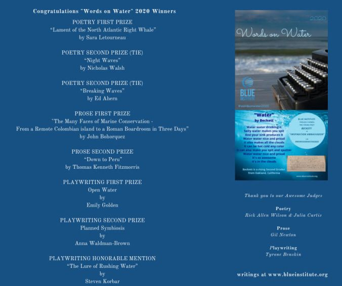 Blue Institute Words on Water 2020 winners